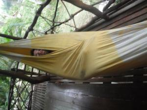 James in the banana hammock...