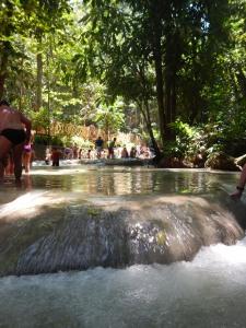 Dunn's River Falls Jamaica (7)