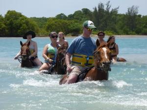 horse ride and swim Jamaica (3)