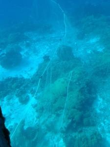 Curacao (1)