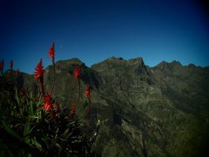 Eira Do Serrado  reminded me of the Drakensburg Mountains of South Africa