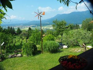 The view from Kaja's balcony with harvest